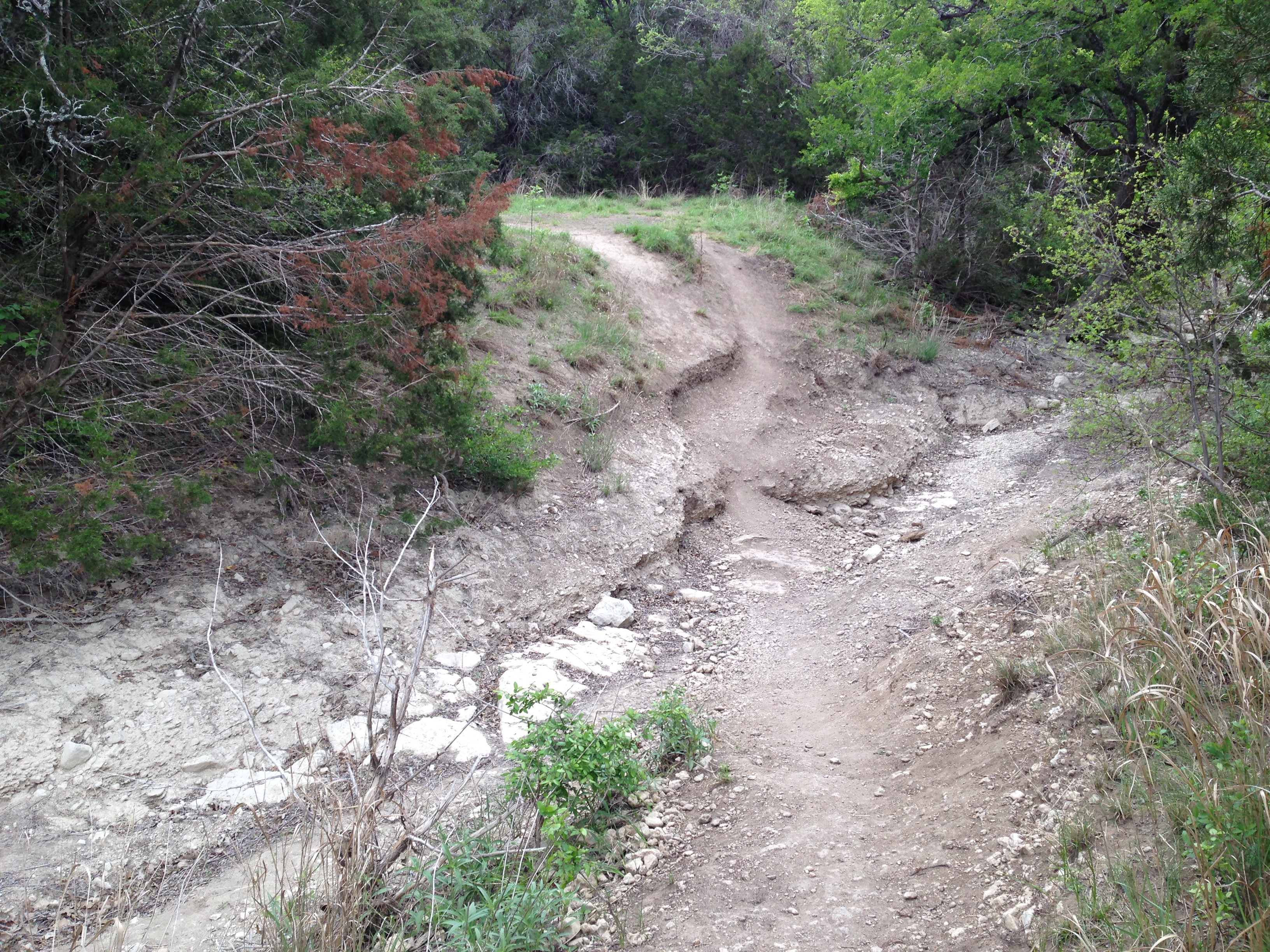 The metropolitan park trail crosses Slaughter Creek with a short, steep, descent. It'll be awhile before I can ride it.
